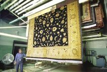 Denville Township NJ Rug Drying